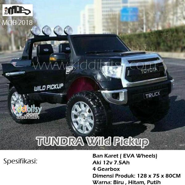 TUNDRA Wildpickup MOB-2018